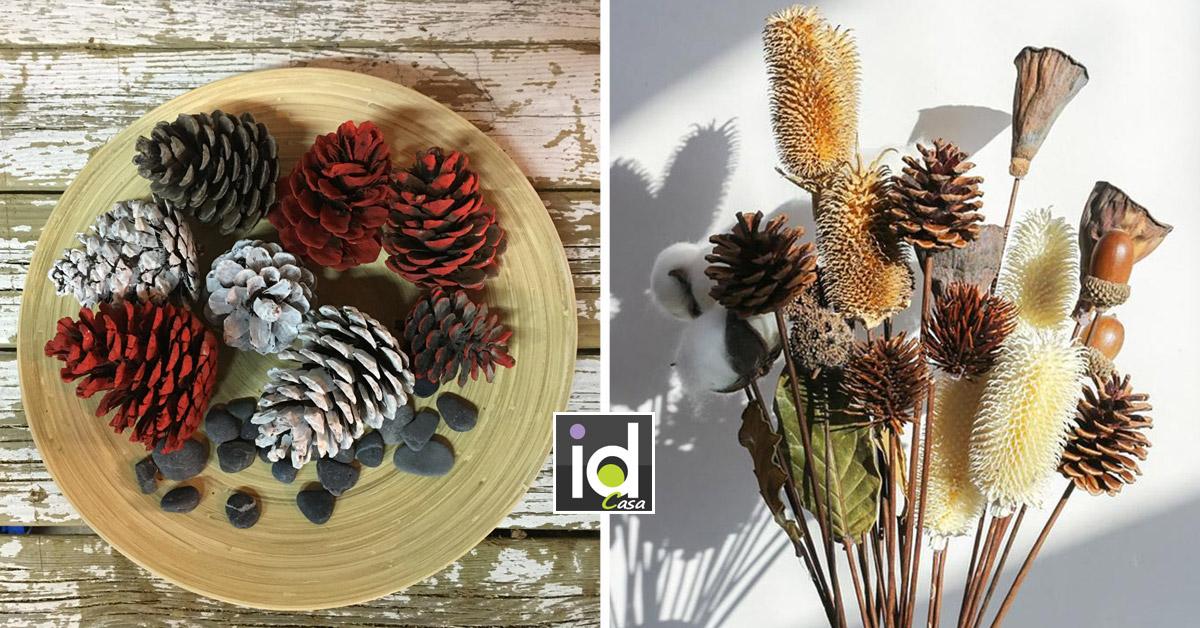 Recuperare le pigne per creare bellissimi ornamenti per la casa