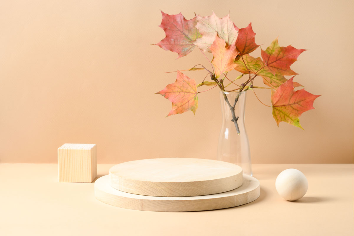 alberello d'autunno bello e originale