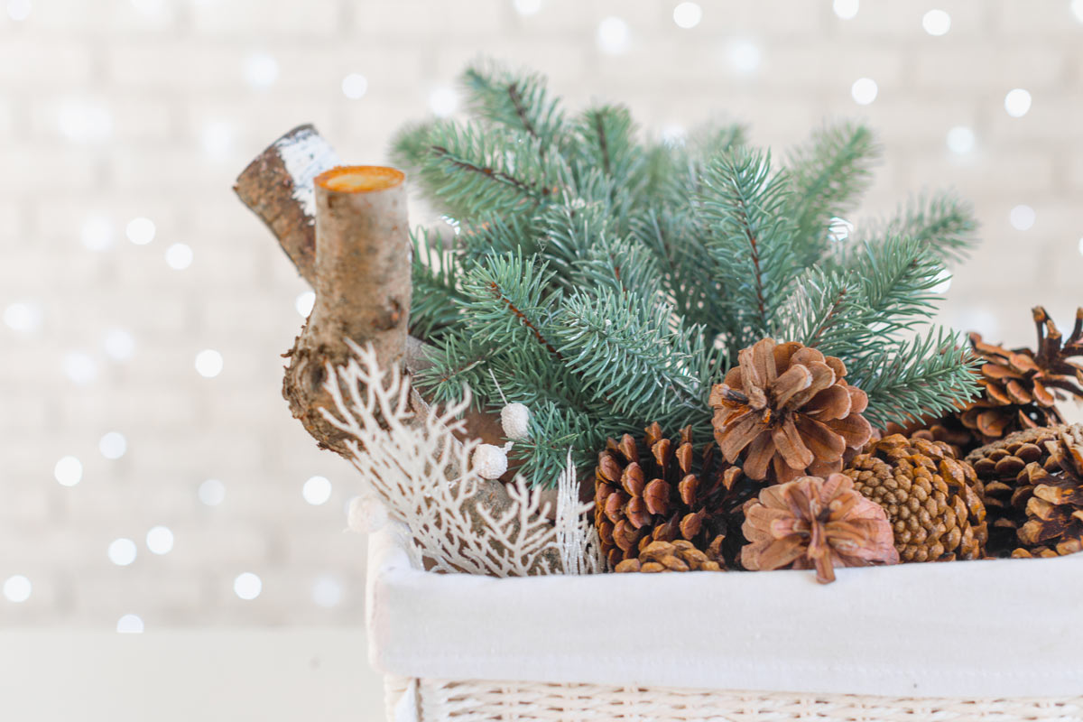 Cestino decorato con pigne, aghi di pino e tronchetti, una bella decorazione invernale fai da te.