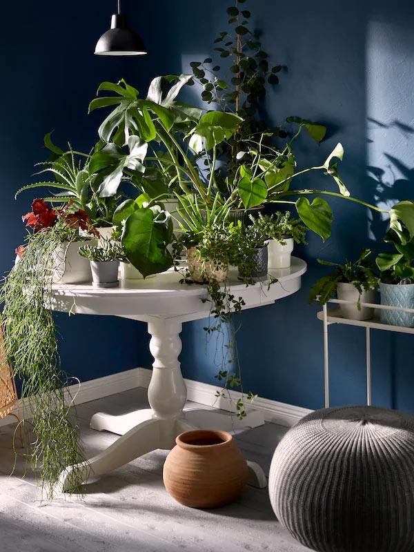 Tavolo rotondo bianco IKEA con piante verde.