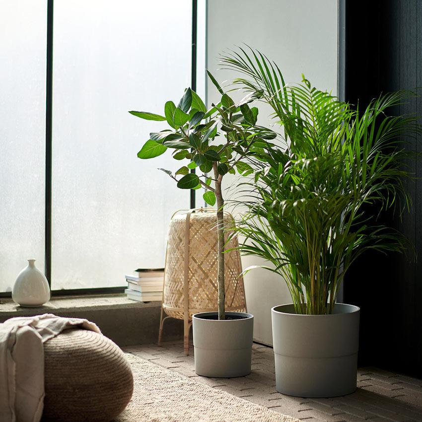 Decorare il soggiorno con piante artificiali IKEA.