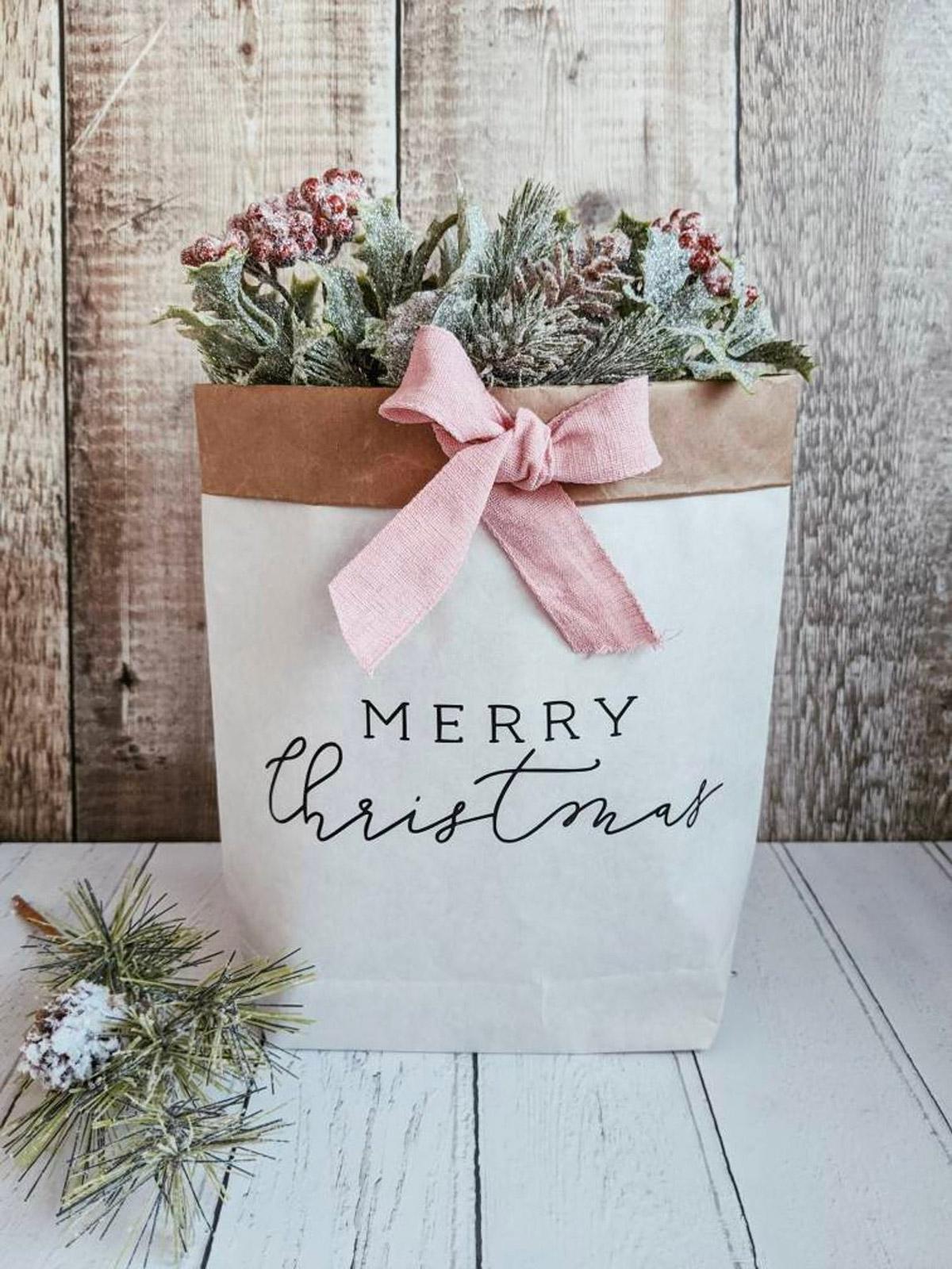 Cachepot natalizio originale per piante e piantine.
