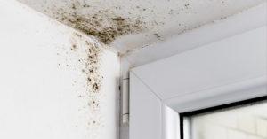 Umidità sulle pareti rimedi.