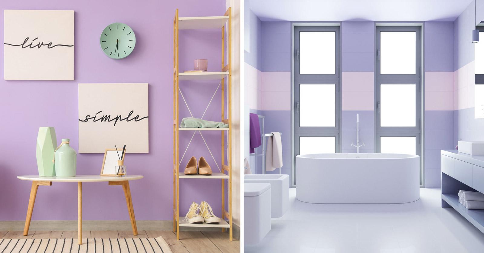 Color malva per le pareti.
