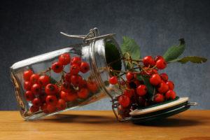 Le piante portafortuna che bisognerebbe tenere in casa durante