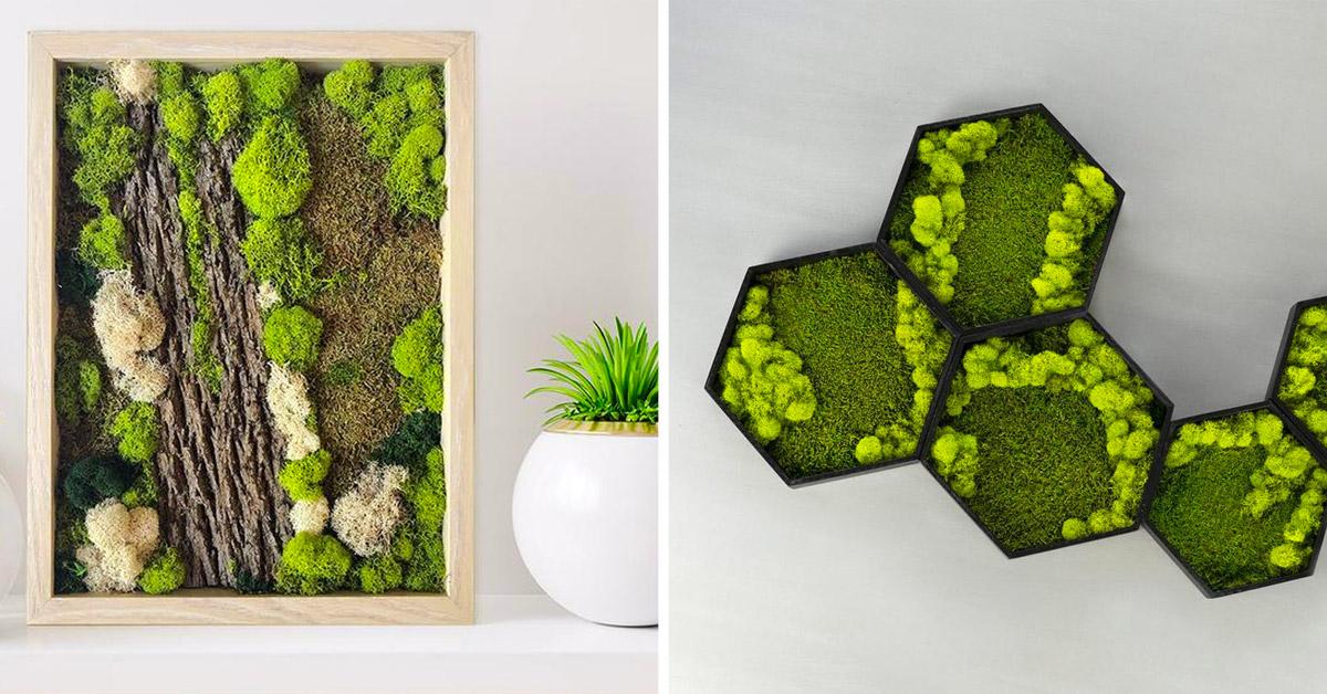 quadro di muschio: una soffice decorazione green per le pareti di casa o come soprammobile