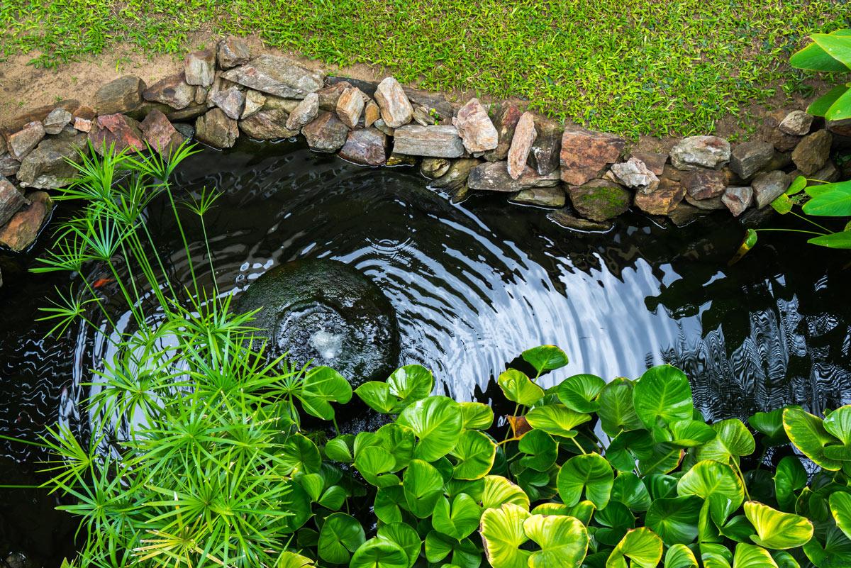 Come realizzare un laghetto in giardino.