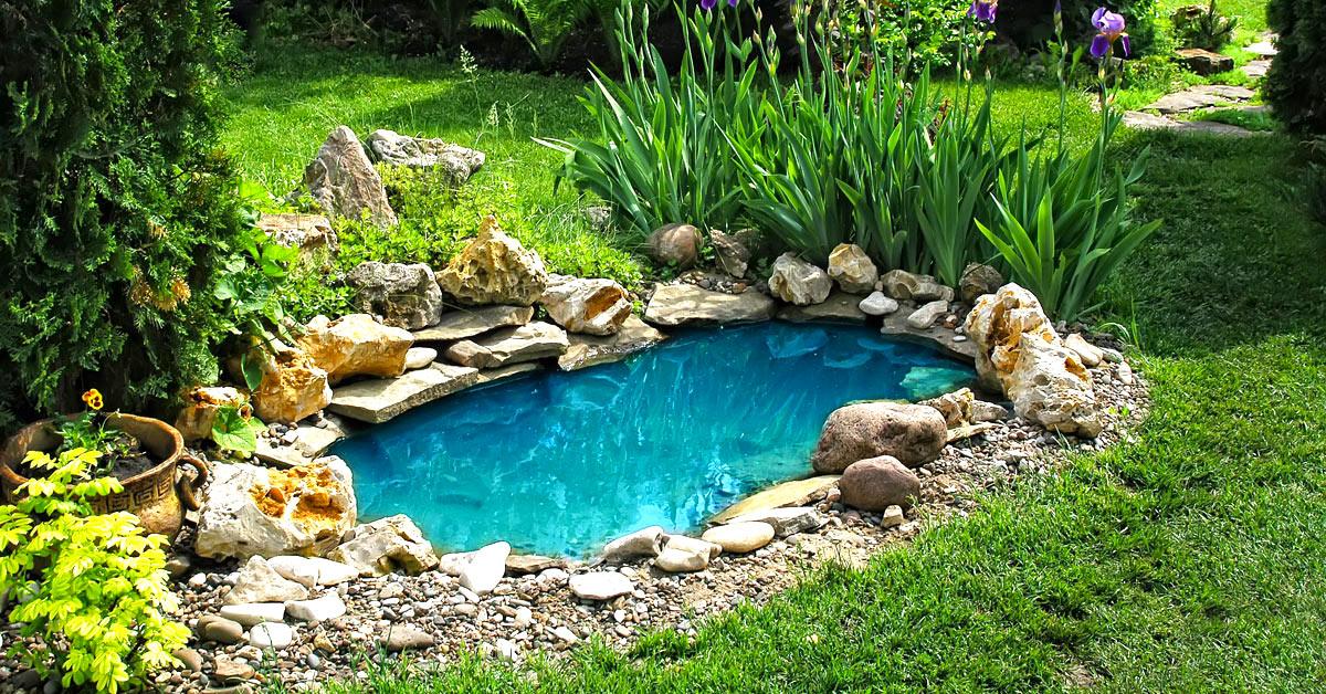 giardino laghetto