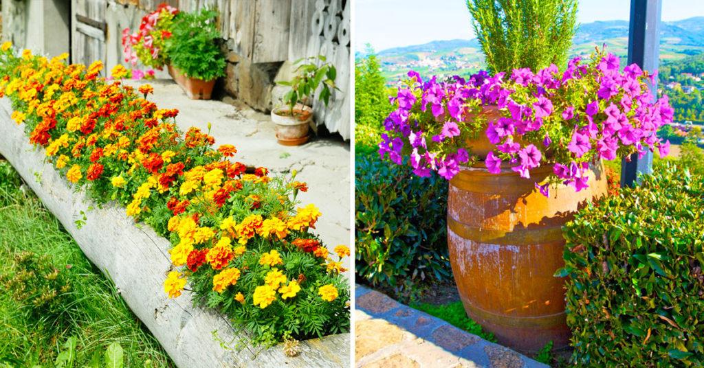 giardino fioriere particolari