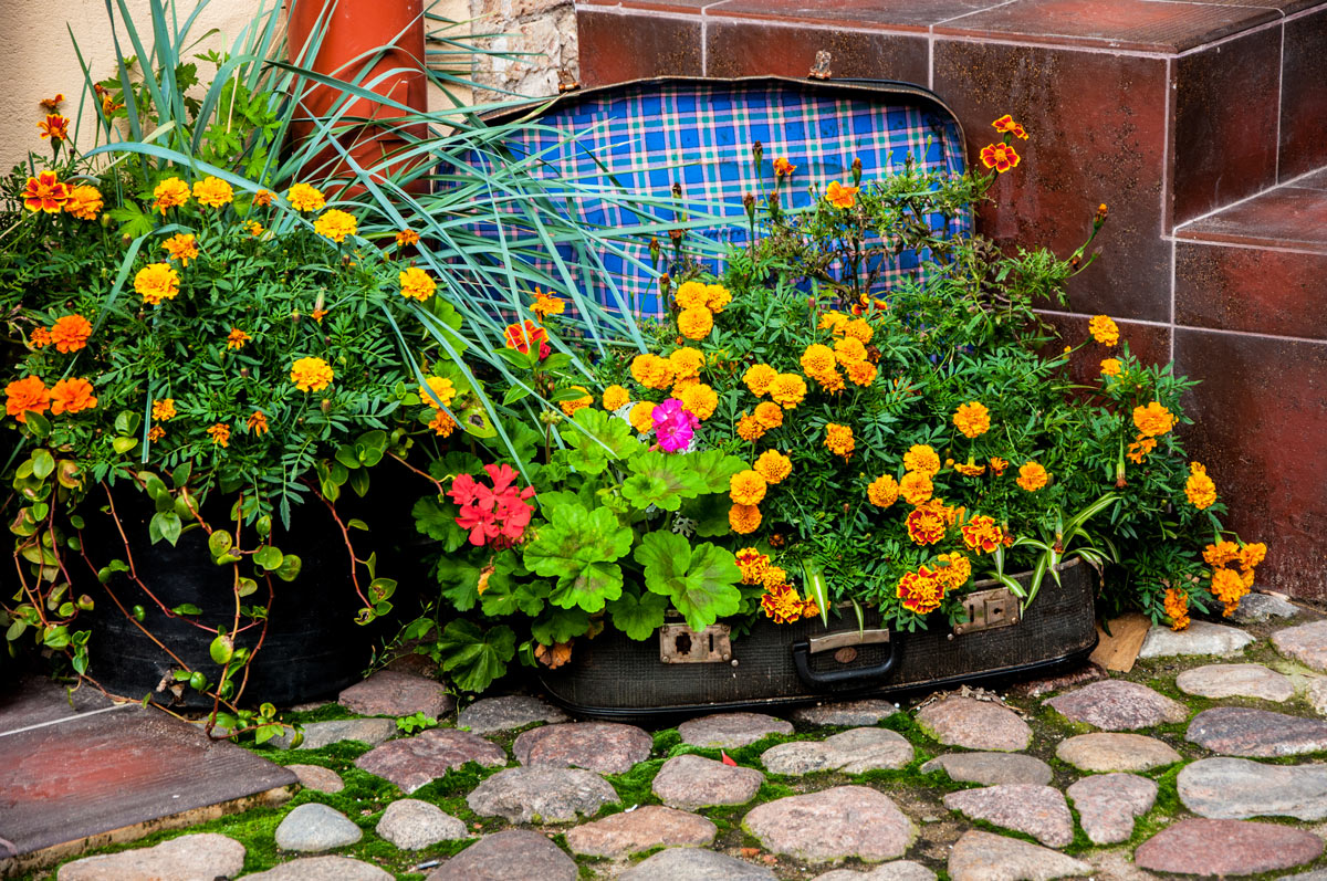 Riciclo creativo giardino