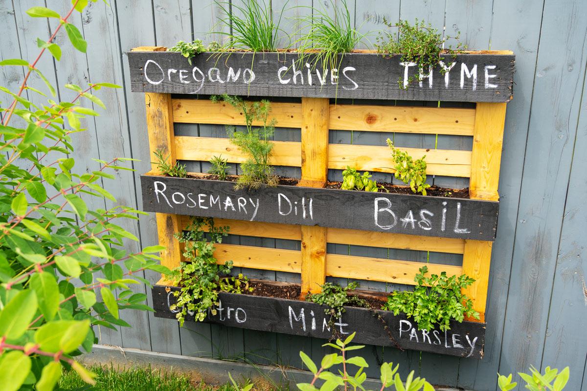 piccolo orto in giardino con il riciclo dei bancali