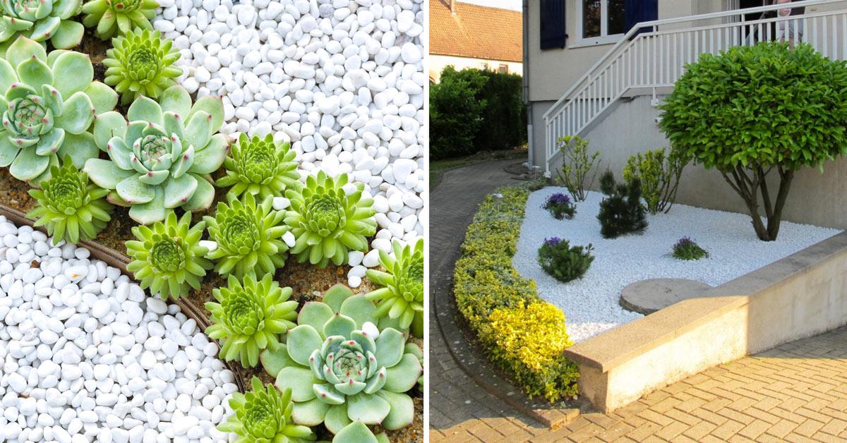 Decorazioni con pietre bianche in giardino.