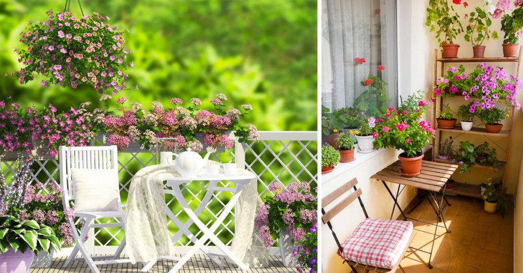 Piccolo giardino fiorito sul balcone.