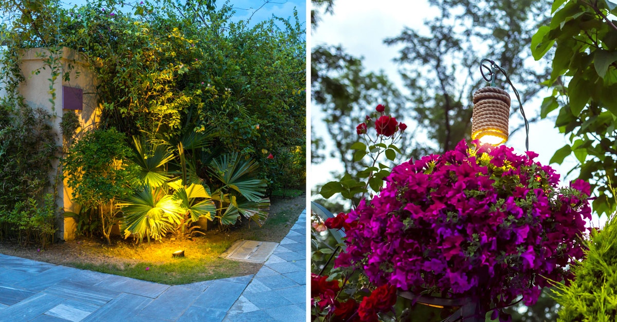 Come illuminare le piante in giardino