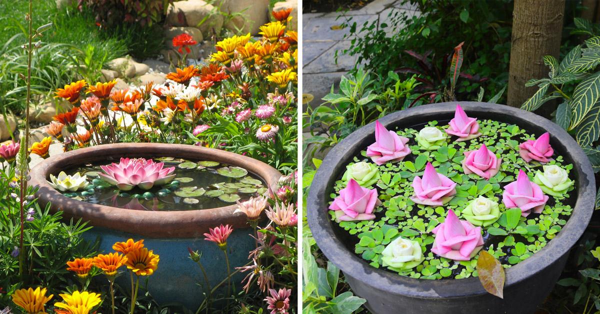 Laghetti in vaso in giardino.