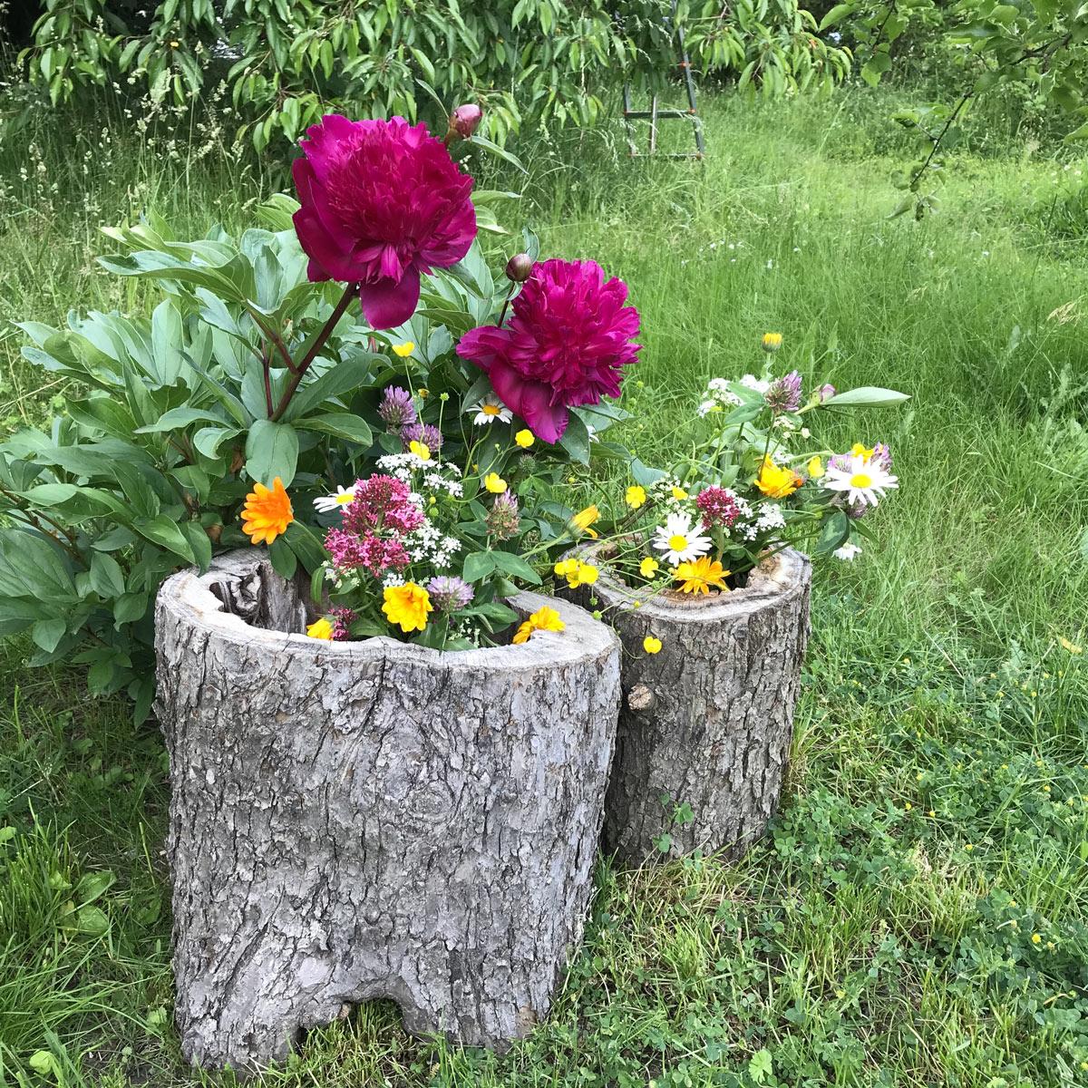vaso di fiori creativo in giardino