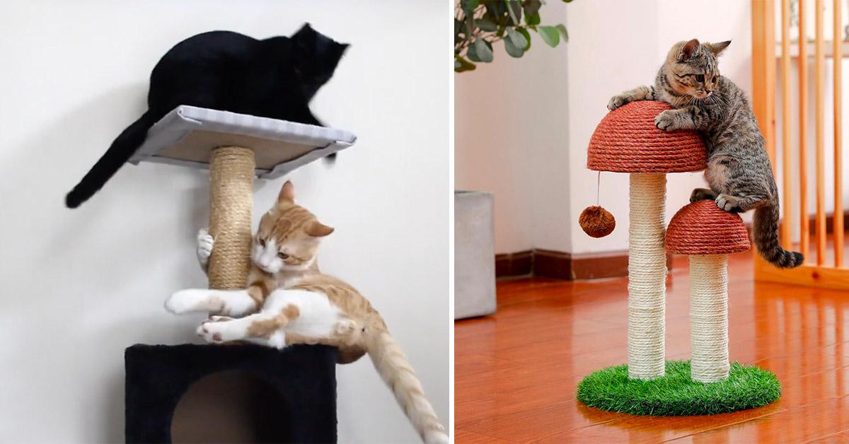tigraffi per gatti fai da te con idee in più per il progetto