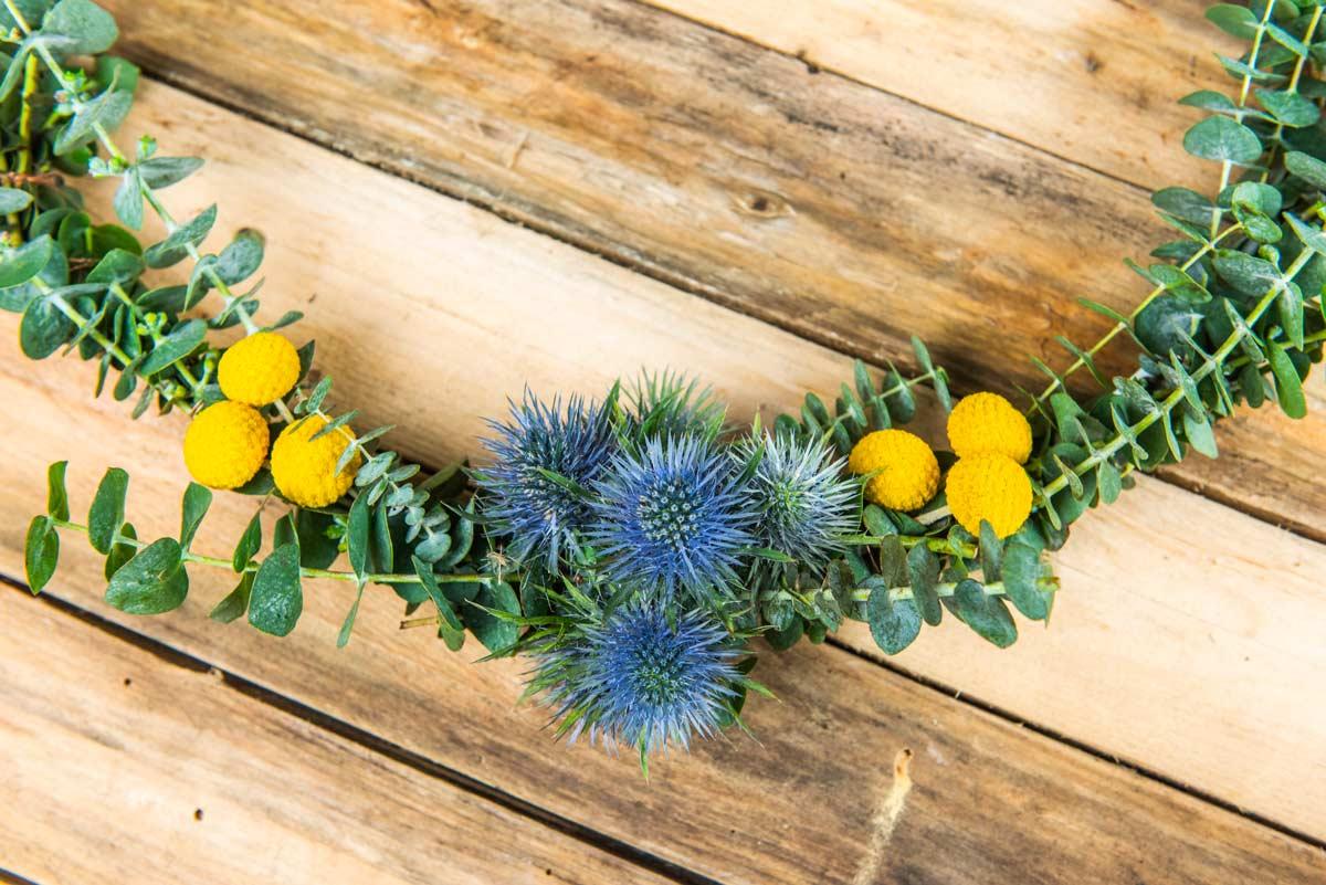 fiori autunnali Crespidia